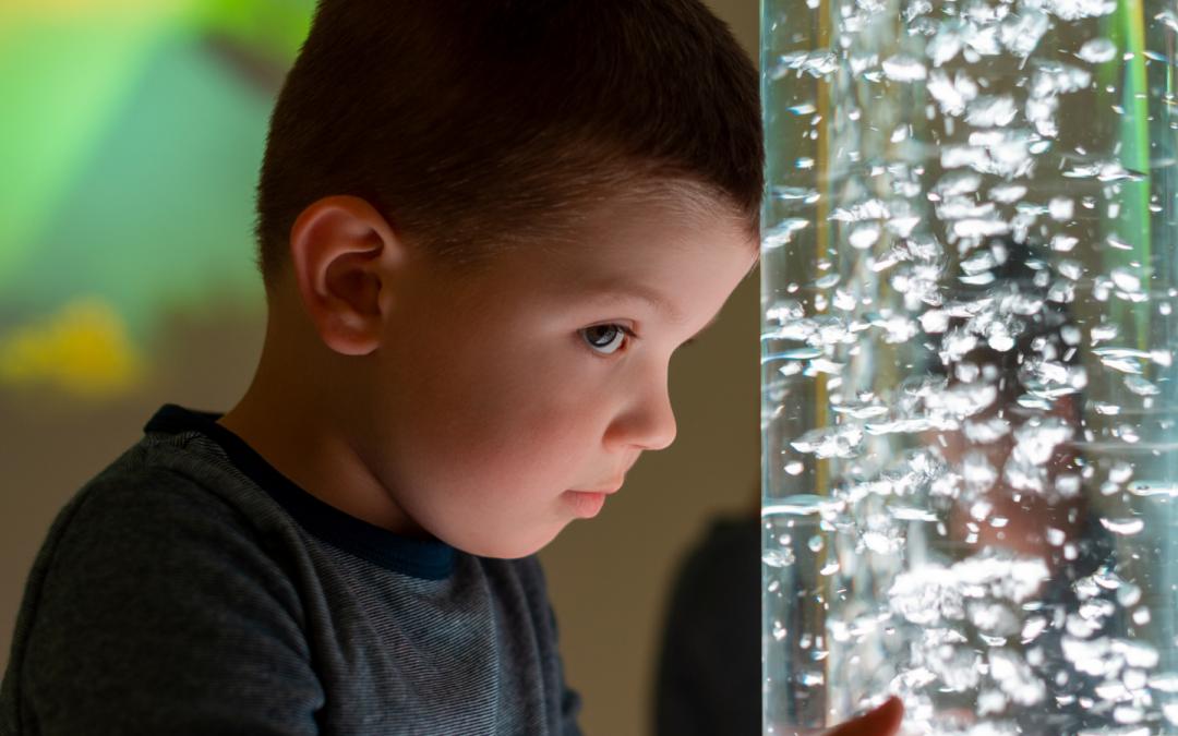 ¿Cómo evaluar una dificultad del procesamiento de la información sensorial en niño/as con trastorno del espectro autista?